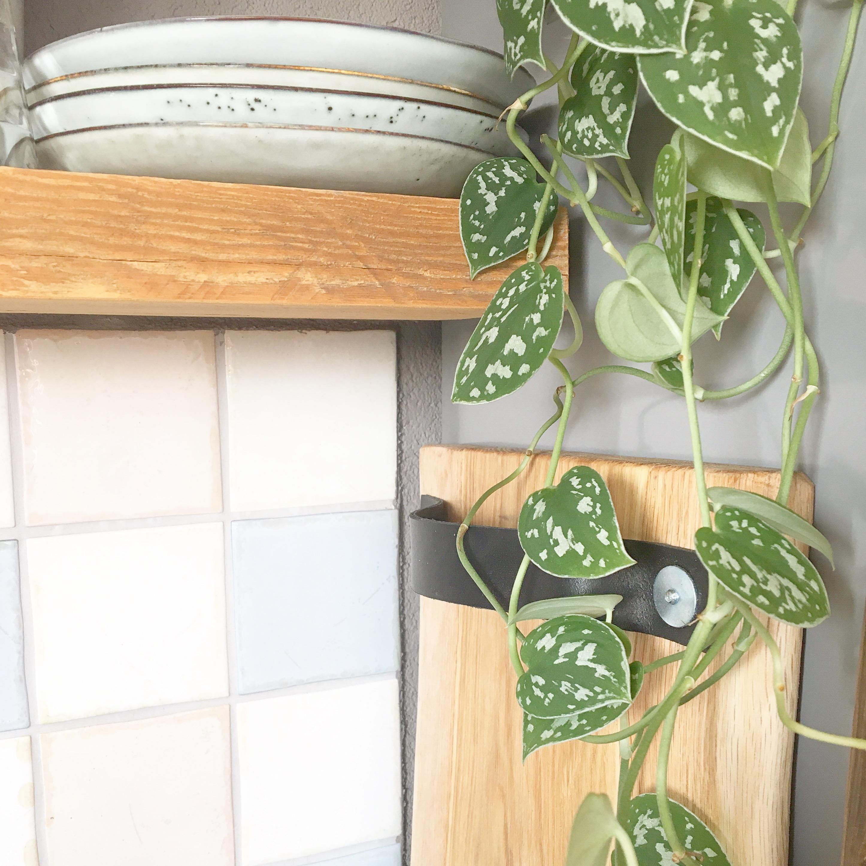 plant horecaplank keuken